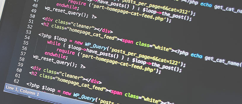 Webseiten programmieren lassen
